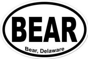 Bear Delaware - Sticker