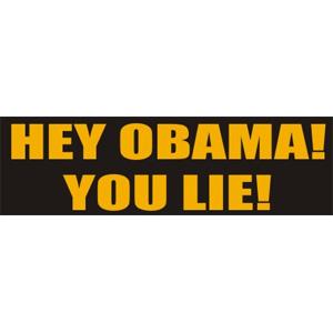 Hey Obama! You Lie - Bumper Sticker