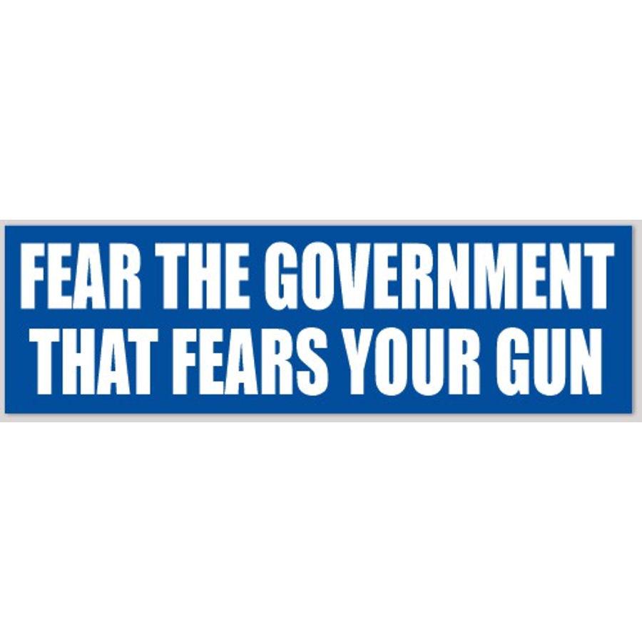 Political satire bumper sticker Dear Government go f*/&k yourself
